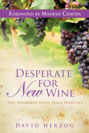 Desperate For New Wine PB - David Herzog