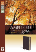 Amplified Bible B/L Burgundy - Zondervan